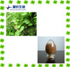 Mass Product Lowest Price Epimedium Icariin and icariins Extract 10% 20% 98%