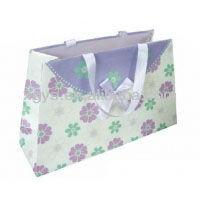 Fashional Paper Gift Bag Carrier Bag Custom Paper Bag