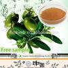 100% Natural Olive leaf Extract(olea europaea)12%-50% Oleuropein