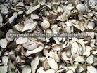 Vietnam Cassava Chip