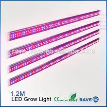 LED Grow Light Tube T8 660nm 450nm blue for Greenhouse plants