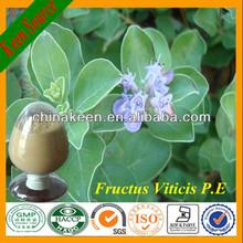 Chasteberry Extract/Fructus Viticis Extract Vitexin