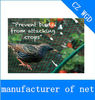 pead net bird para a captura de aves