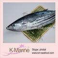 la exportación de pescado congelado de atún barrilete