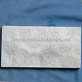 cuarcita blanca panel de piedra de hongos de piedra