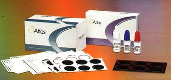 Latex Kit