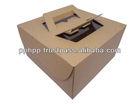 "Cake Carrier Box 9"""