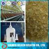 Technical gelatin for glue and wood veneer(industrial grade)