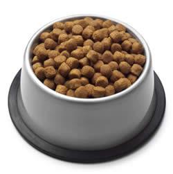 köpek ve kedi ekstrüde gıda