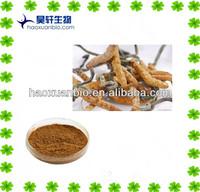 Health food supplyment Cordyceps P. E. / Cordyceps Sinensis Extract Polysaccharides