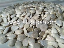 pumpkin seeds white Volga Grey