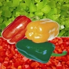 2014 new Frozen/IQF Capsicum dices