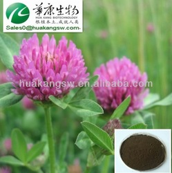 antibacterial & anti-inflammatory red clover extract, red clover p.e.