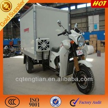 Tough Tandem Tricycle with Closed Cargo Box