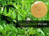 Glycyrrhiza Glabra Extract/Liquorice Liquid Extract