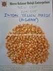 A GRADE -- Yellow Corn ANIMAL FEED ( New Season Crop 14-15 )