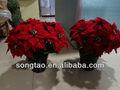 perfumada flor artificial para a decoração de natal