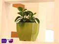 Verde pequeno vaso quadrado de plástico& vasos de plantas& vasos de jardim
