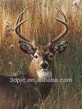 China manufacturer newest design 3d picture of animal deer