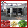 Fruit and vegetable processing machine/hot air recycling food dehydration machinery