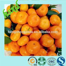 chino caliente venta de la fruta cítrica naranja mandarina