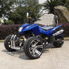250cc EEC Three wheel ATV Quad