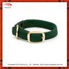 Fashion green funky dog collars