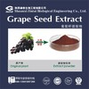 Natural Grape Seed Extract 95%UV Proanthocyanidins