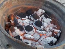 barbeque bio coal