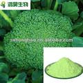 de graines de brocoli extrait des échantillons gratuits