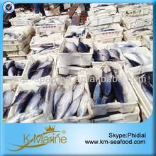 Fair Price Good Yellowfin Tuna