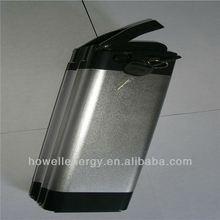 Hotsale lifepo4 24v 10ah