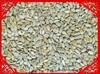 sunflower seeds flower roasting sunflower kernels