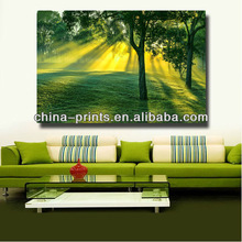 Forest Photography printing / Tree Wall Art / framed trees canvas print