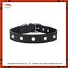 Classic black dog show collar