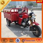 250cc Cargo Trike Scooter China