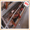 High quality automatic egg laying chicken coop for sale