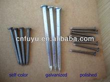 polished boat nails copper nails