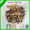 Areca catechu extract/betel nut/ areca nut/Betelnut Seeds