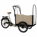 electric assist cargo trike bikes