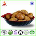 venda quente orgânica castanha fresca saudável snack alimentos