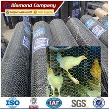 galvanized hexagonal woven netting weight for chicken/diamond brand chicken wire mesh (factory sale)