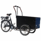 3 wheel family cargo bike for adult