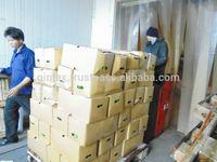 Fresh Lemon, Fresh Limen Production in Viet Nam 2014