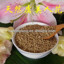 hot selling organic and fresh corn poppy bee pollen