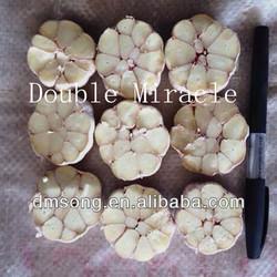 China Wholesale garlic supplier Low price