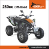EEC certified legal on road adult gas quad 250cc