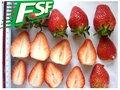 Todas las estrellas congelados/iqf fresa rojo entero/dados/tira/pulpa