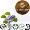 100% Natural Coleus Forskohlii Extract 20%Forskolin CAS 66575-29-9