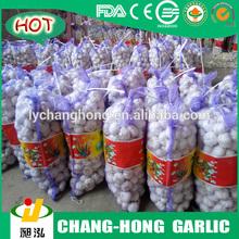 [Hot Sale] fresh pure white garlic